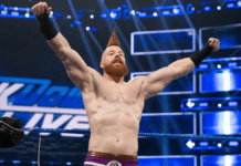WWE SmackDown Battle Royal Results May 29 - Sheamus Wins & Face Daniel Bryan